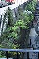 2011 CommonwealthAve BackBay BostonMA September IMG 3759.jpg