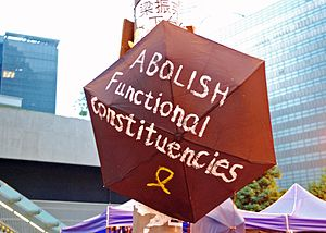 Functional constituency (Hong Kong) - The 2014 Hong Kong protests sought, among other goals, to abolish functional constituencies