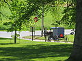 20140525 040 Amish Buggy, Lancaster County, Pennsylvania (16161048563).jpg
