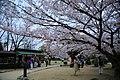20160403 Himeji-Castle 3484 (26826153835).jpg