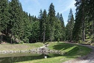 Nowa Biela - Image: 2016 Nowa Biela 05