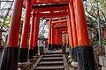 20181110 Fushimi Inari Torii 13.jpg