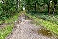 2019-10-05 Hike Forst Leucht. Reader-14.jpg