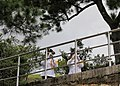 2020.10.07 總統偕同副總統出席「李前總統登輝先生奉安禮拜」 (50429850728).jpg