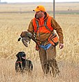 2020 Kansas Governor Ringneck Classic pheasant hunt, Colby, KS on 2020-11-20, 02.jpg