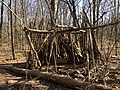 2021-03-11 14 02 29 A makeshift fort made out of logs in a forested area within the Franklin Farm section of Oak Hill, Fairfax County, Virginia.jpg