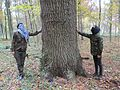2 standing next to the tree to be cut.jpg