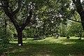 51-101-5014 Юннатський парк, Одеса.jpg