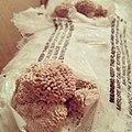 5 - misting the mushrooms (9791601116).jpg
