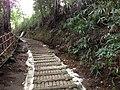 5 Chome Jindaiji Motomachi, Chōfu-shi, Tōkyō-to 182-0017, Japan - panoramio (20).jpg