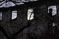 624viki Ruiny zamku w Pankowie. Foto Barbara Maliszewska.jpg