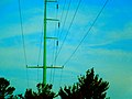 ATC Power Line - panoramio (20).jpg