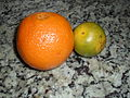 A Navel Orange and a Pera Orange.JPG