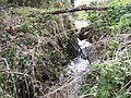 A Norfolk waterfall - geograph.org.uk - 527199.jpg