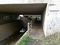 A Path Under The A50 - geograph.org.uk - 1196674.jpg