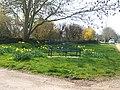 A quiet corner - geograph.org.uk - 378846.jpg