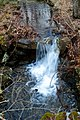 A tiny waterfall - Flickr - odako1.jpg