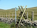 A well marked footpath leading towards Fign Oer - geograph.org.uk - 1109161.jpg