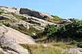 Acadia 2012 08 22 0328 (7958483932).jpg