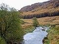 Afon Tywi and Craig Ddol-goch, Ceredigion - geograph.org.uk - 1069449.jpg