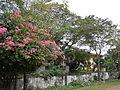 Agno,Pangasinanjf9452 05.JPG