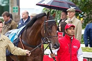James Doyle (jockey) - Al Kazeem, who James Doyle rode to win three Group 1 races