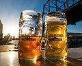 Alamo Beer Near Hays Bridge (2015-03-26 18.18.42 by Nan Palmer).jpg
