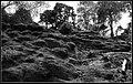 Alderley Edge (17658793056).jpg