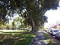 Alexandria NSW 2015, Australia - panoramio (221).jpg