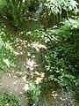 Aller Brook, Dawlish - geograph.org.uk - 1382209.jpg
