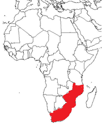 Map of Africa showing South Africa, Malawi, Mozambique and Zimbabwe highlighted
