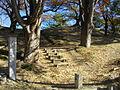 Amagawa-Futagoyama Kofun.JPG