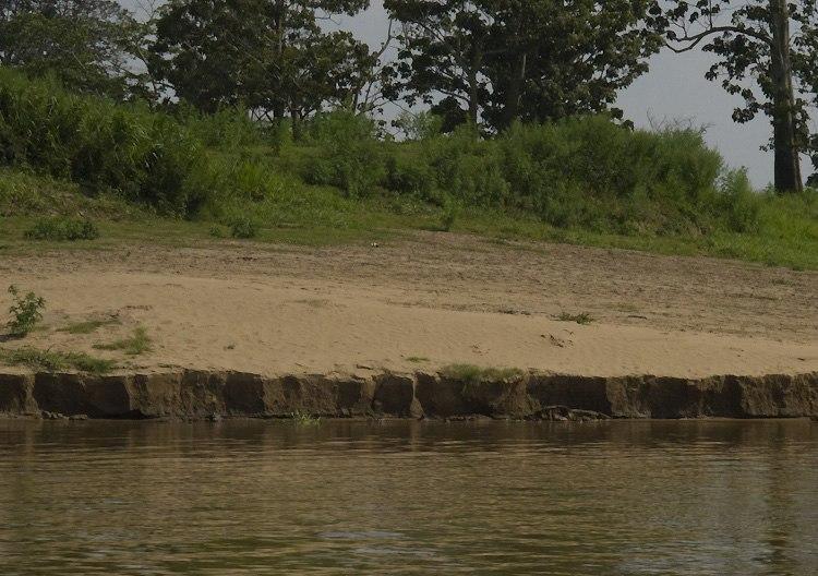 Amazon alluvium deposit - autazes