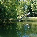 Amiens, les hortillonnages, (6).jpg