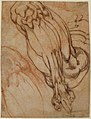 Anatomical Studies of a Leg (recto); Study of a Leg (verso) MET 21.15.1 RECTO.jpg