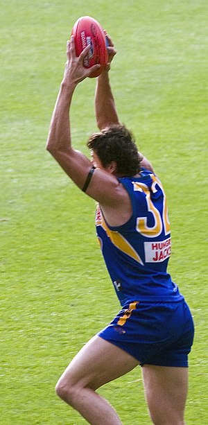 Andrew Embley - Embley marking the ball against Sydney in the 2005 AFL Grand Final