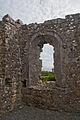 Annaghdown Abbey of St. Mary de Portu Patrum Choir South Window 2010 09 12.jpg