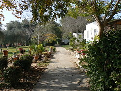 Another walkway in Kibbutz Mefalsim.JPG