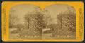 Arbor, P. Schuttler's grounds, by P. B. Greene.png
