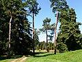 Arboretum - panoramio (7).jpg