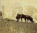 Archivo General de la Nación Argentina 1890 aprox Mendoza. Cordillera de los Andes, paso fronterizo.jpg