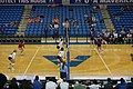 Arkansas State vs. UT Arlington volleyball 2019 20 (in-match action).jpg