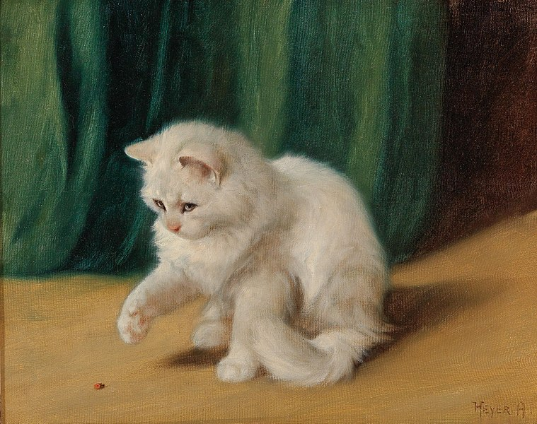 File:Arthur Heyer - Cat with Ladybird.jpg