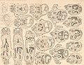 Atlas d'embryologie (1889) (20335248652).jpg