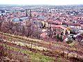 Autre panorama sur Obernai.jpg