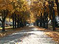 Autumn in Green Bay 04.jpg