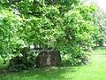 BIW Goethepark Stein.JPG