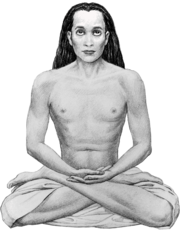 Babaji-transparent.png