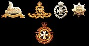 Badges of the Bermuda Regiment and related Regiments
