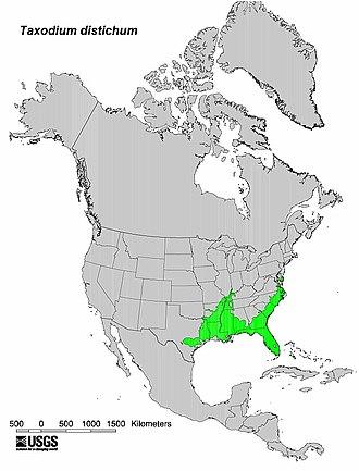 Taxodium distichum - Bald cypress range